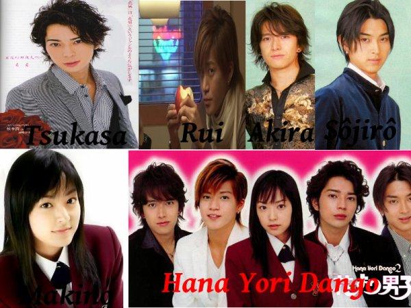 x3bouboux3___Hana yori dango___x3