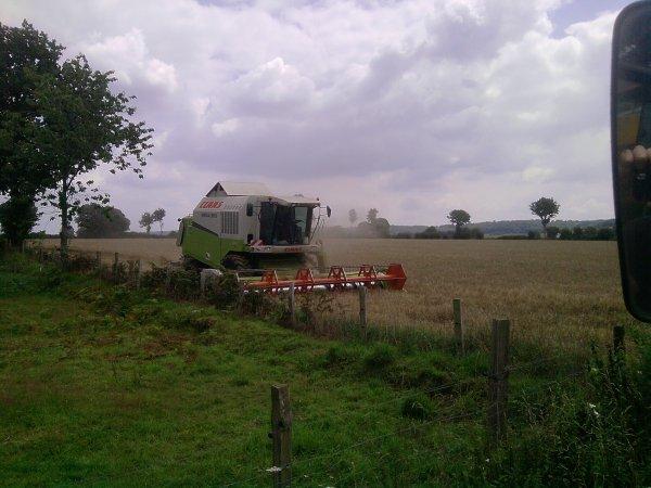 debut des moison de blé 2011