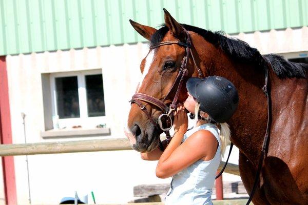 Ma vie mon cheval Freihern de Brukom.