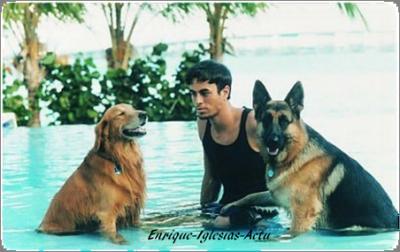 Enrique n°2