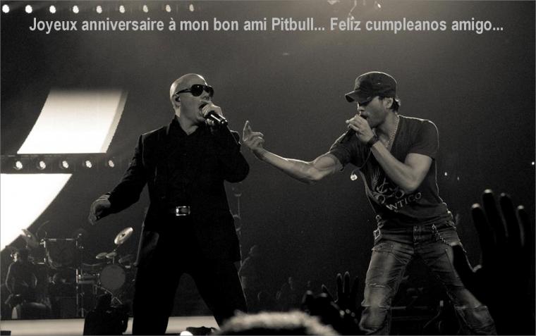 Joyeux Anniversaire Pitbull - Enrique