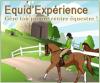 CE-equidexperience