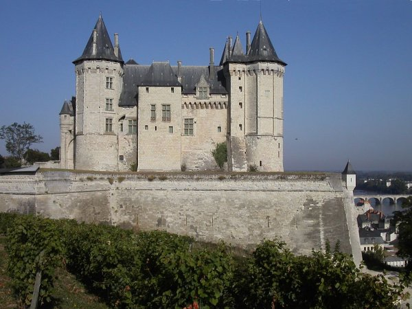 Saumur (49)