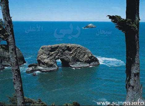 hichamihssan