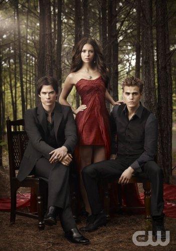 j'adore....les  4 tomes de journal d'un vampire