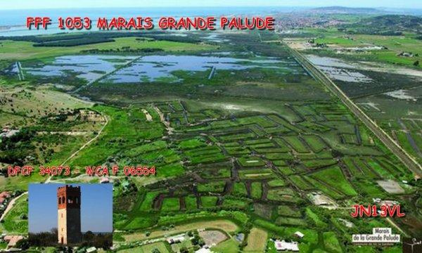 FFF 1053 MARAIS DE LA GRANDE PALUDE