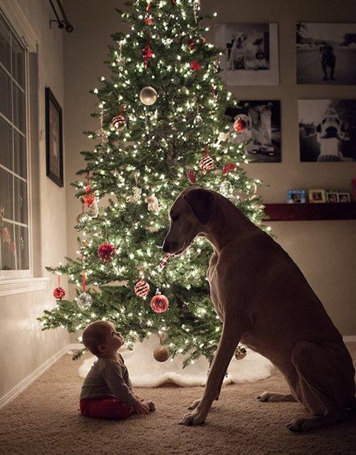 Le présent est le cadeau que l'on te donne à chaque instant ...