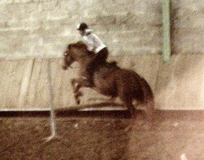 Cours à poney   :)