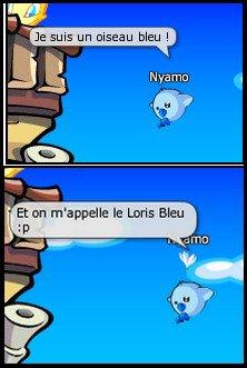 Le Loris Bleu