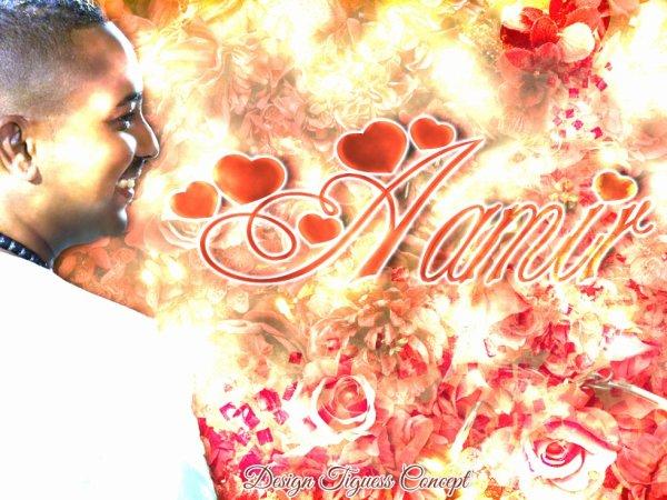 AAMIR LOVE