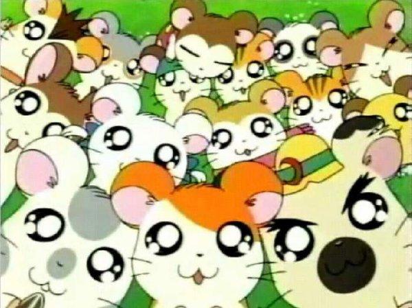 Hamtaro episodes stream vf