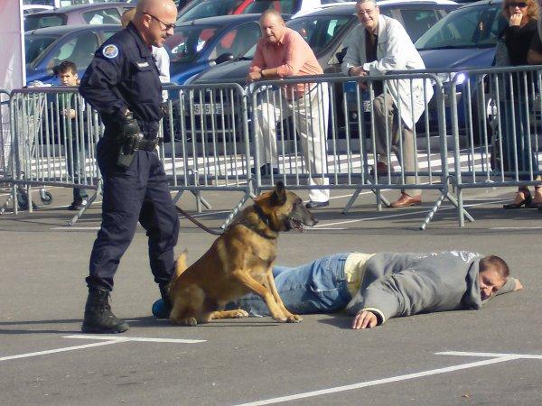 Journée de la sécurité intérieur (9 octobre 2010)