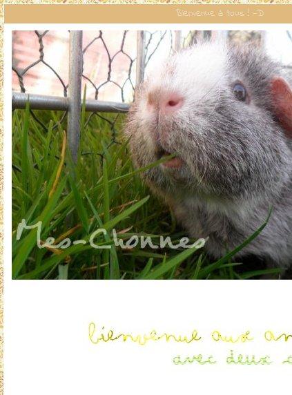 Mes-Chonnes