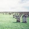 « MORTAL TEARING »