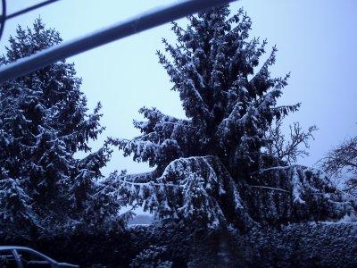 jeudi 2 decembre sous la neige bien blanche