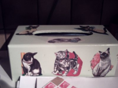 boite a mouchoir modif de chats