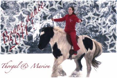 Bonne année 2011 à tous !!
