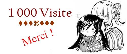1 000 Visite !