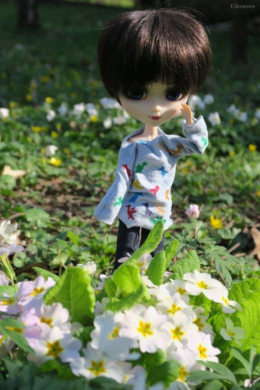 """Hylde : """"les couleurs du printemps ne sont pas éternelles"""" (Dave)"""