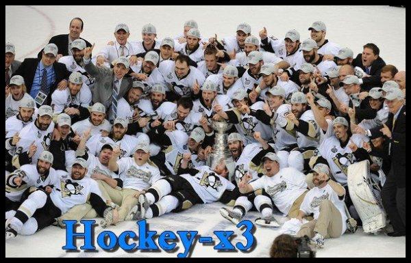 Les Penguins de  Pittsburgh