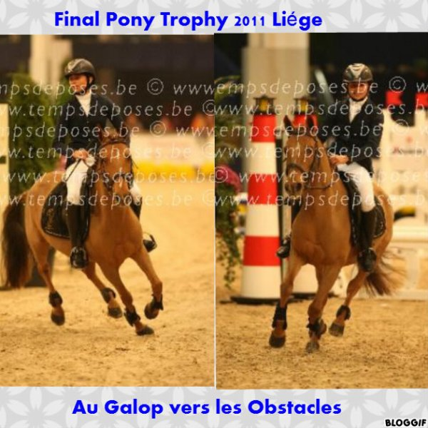 Final du pony trophy 2011 à Liége