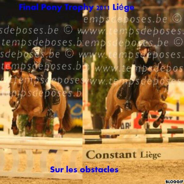 Final du pony trophy 2011 à Liége