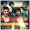 BlogImagine1DBea
