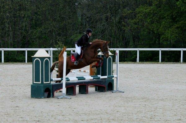 L'equitation, plus qu'une passion, une raison de vivre