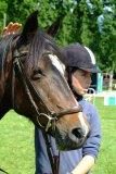 Photo de horselifedu56