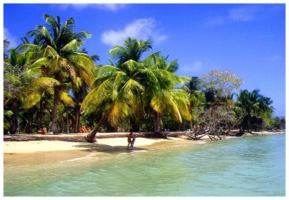 ♥ Le Martinique ♥