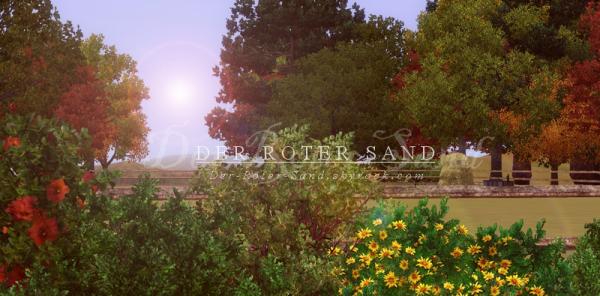 • Bienvenue au haras Der Roter Sand ! •