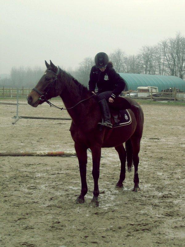DECEMBRE - JANVIER 2012