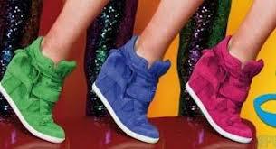 chaussure basket companser