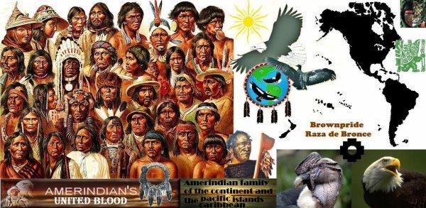 """""""BROWNPRIDE"""" LA RAZA de Bronce - Gran familia de Indios-Americanos/Indigenos/Nativos americanos/Precolombinos/Amerindios"""