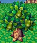 Les arbres (1)