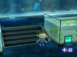 Salle des poissons