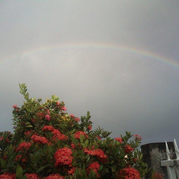 L'arc en ciel du bonheur
