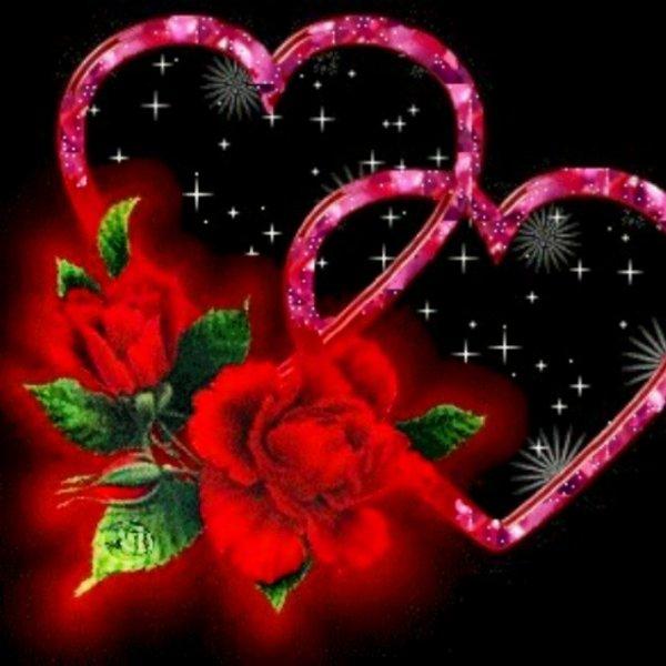 Amour c'est si Magnifique