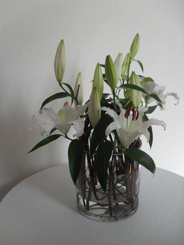 cornouiller et lys blancs