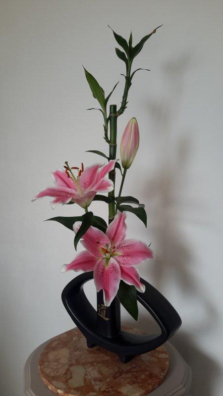 avec un reste de fleurs