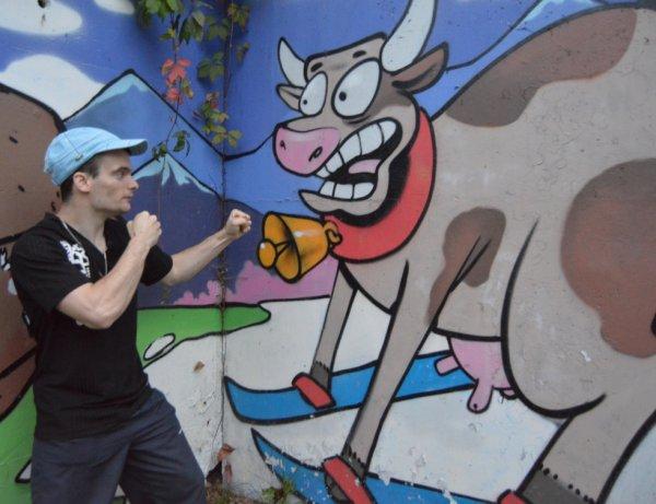 slt a tous voila comment faire peur a une vache mdr