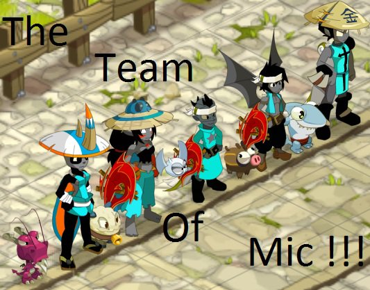 Dofus,Team a mic,equipe de joueurs du serveur many