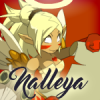 Nalleya (Skyrock)