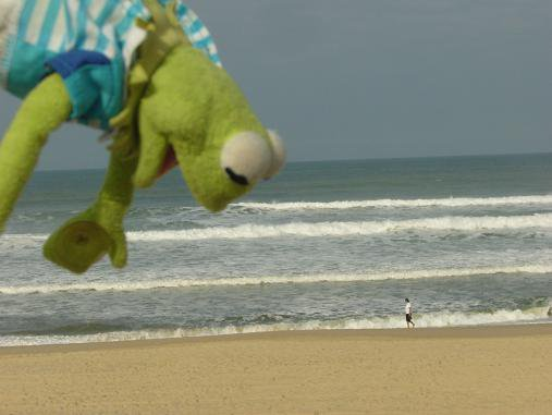 KERMIT ESSAIE D'ATTIRER L 'ATTENTION