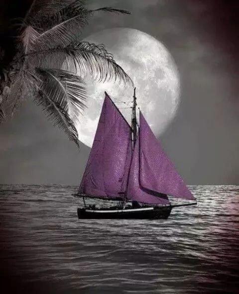 Mon coeur est un bateau