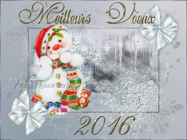 Bonne année bonne santé meilleurs  voeux 2016