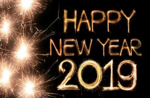 bonne annee bonne sante  meilleurs voeux 2019