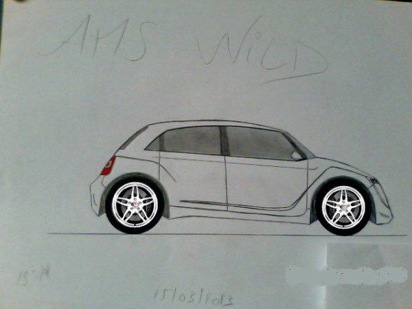 AMS Wild
