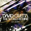 David Guetta The World is Mine & Bloc Party Banquet (Mix)
