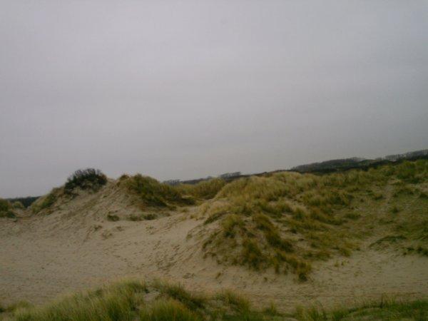 voyage ...dans les dunnes